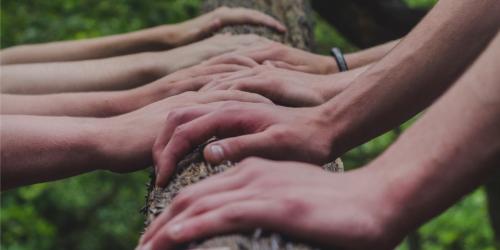 hands aligned conveying teamwork